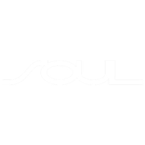 9-LOGO SOUL-B